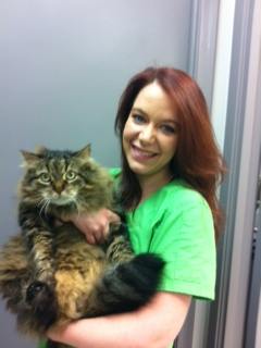 Chelsea with Sam at the BloorMill Veterinary Hospital in Etobicoke - Mississauga - Toronto
